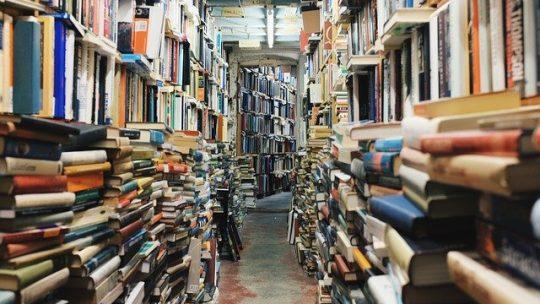Comment bien choisir sa bibliothèque